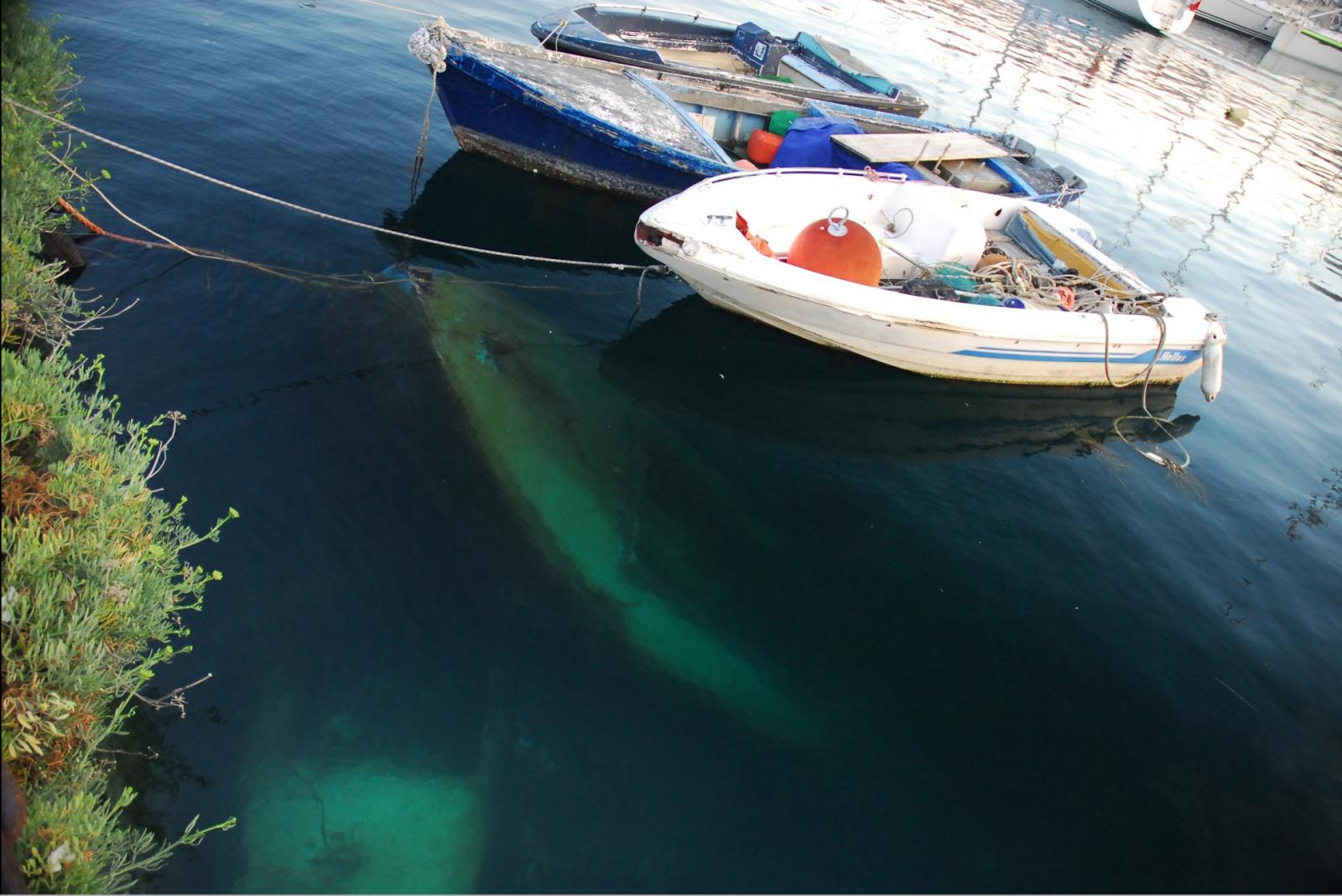 Italian Boat Disposal