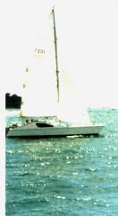 Gulf Tiger sailing