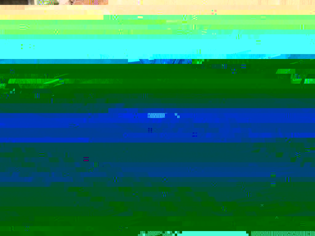 IMGP2260 - Copy.JPG