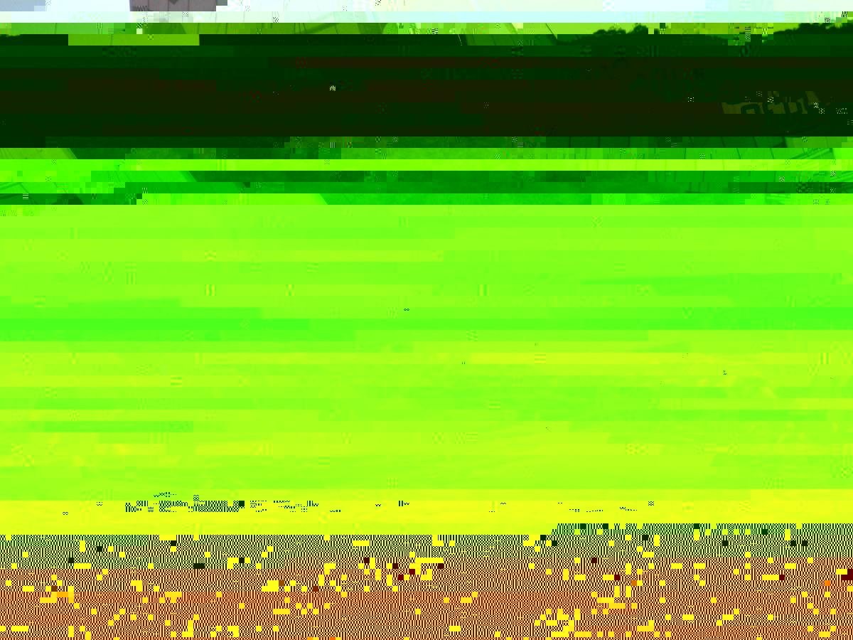 post-10945-141887205095.jpg
