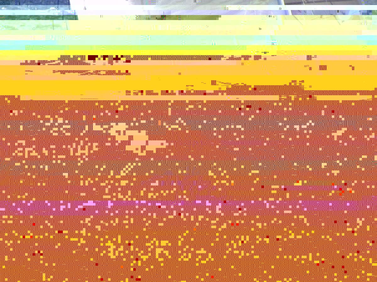 post-10945-141887205134.jpg
