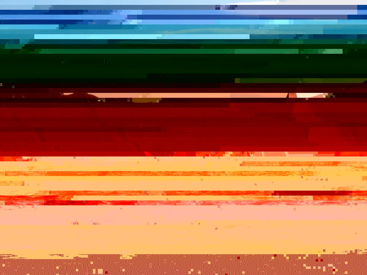 post-10945-141887205553.jpg