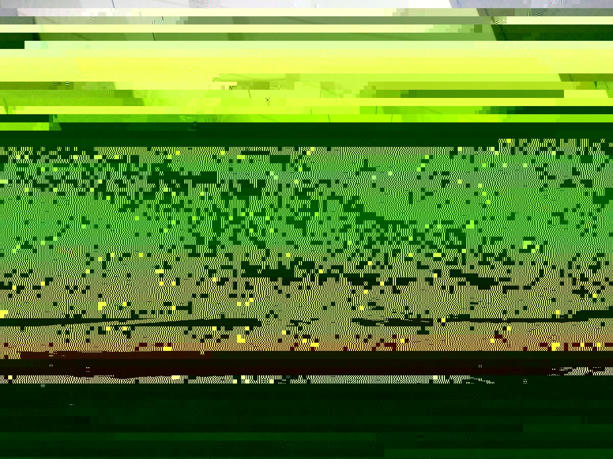 post-10945-141887205845.jpg
