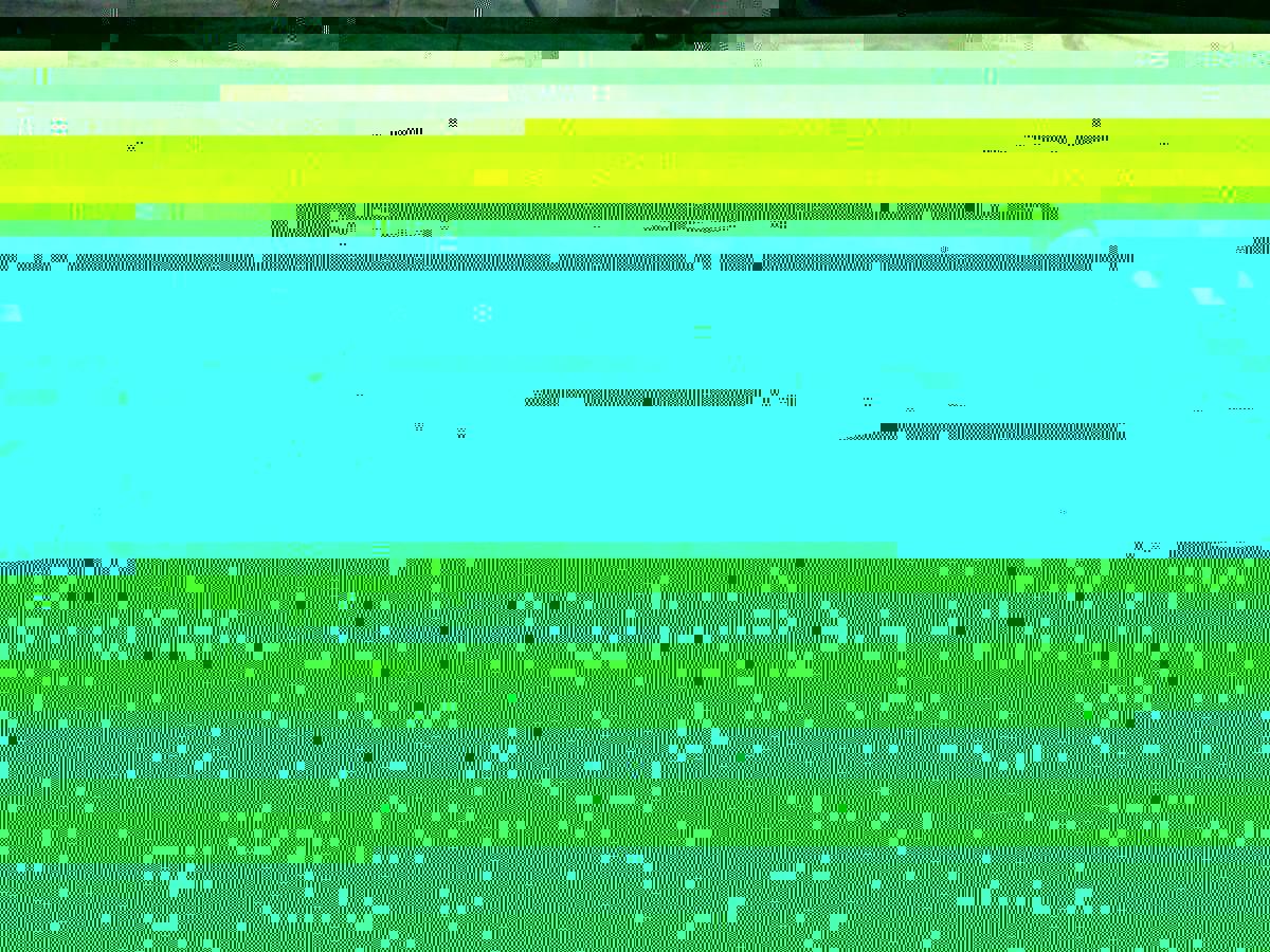 post-10945-1418872059.jpg