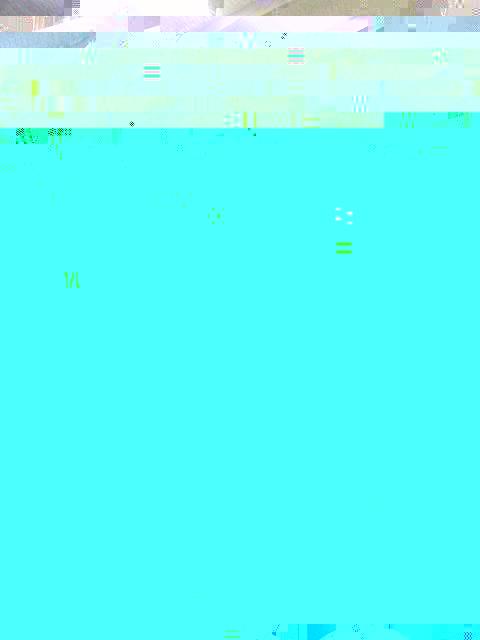 Photo0054 (480x640).jpg