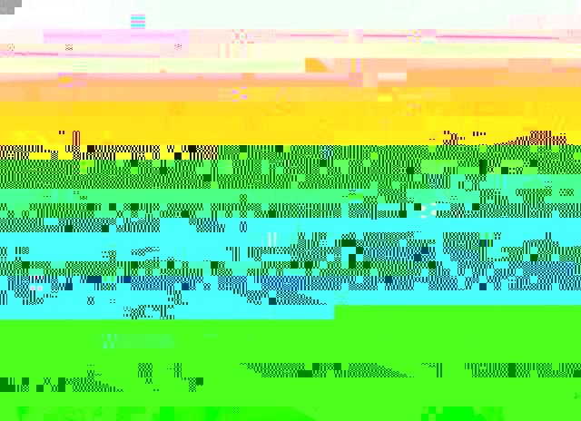 post-2703-141887210124.jpg