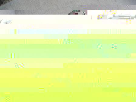 compressed DSCF5073.jpg