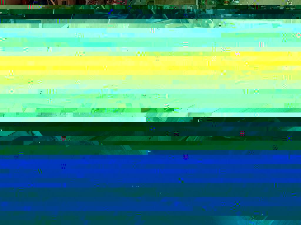 DSCF0166 - Copy.JPG