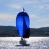 bluesail